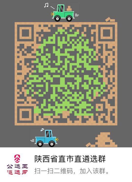 陕西省直市直遴选群 616601882.jpg